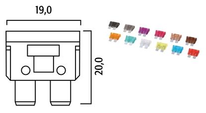 f-214820.jpg
