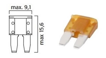 F-502805.JPG